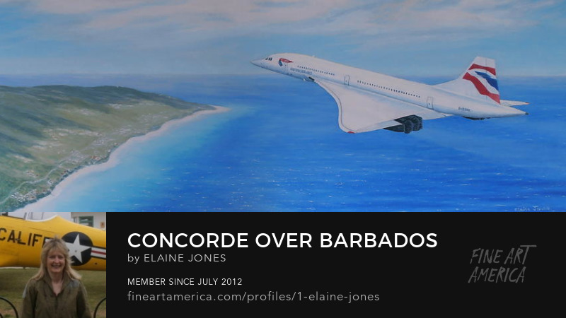 Concorde Over Barbados oil painting by Elaine Jones