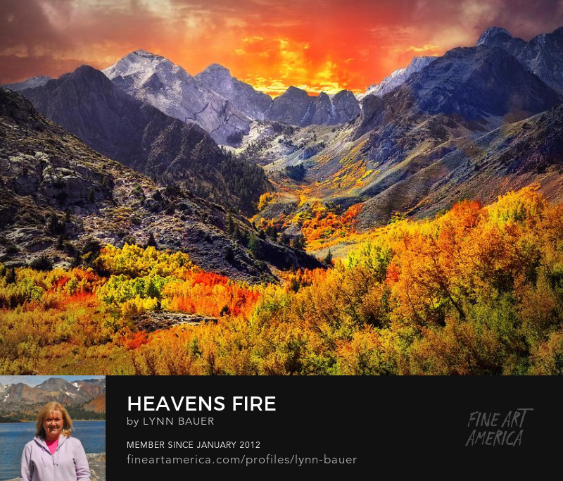 Heavens Fire McGee Creek High Sierra Art by Lynn Bauer