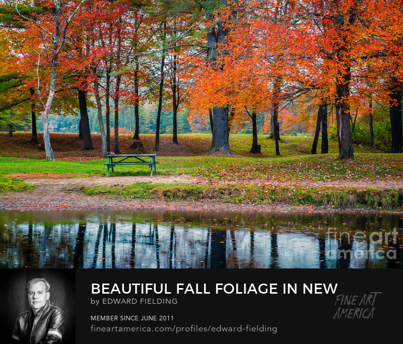 Fall Foliage Photography Prints