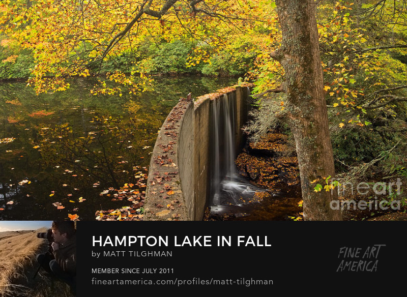 North Carolina Autumn Art Online
