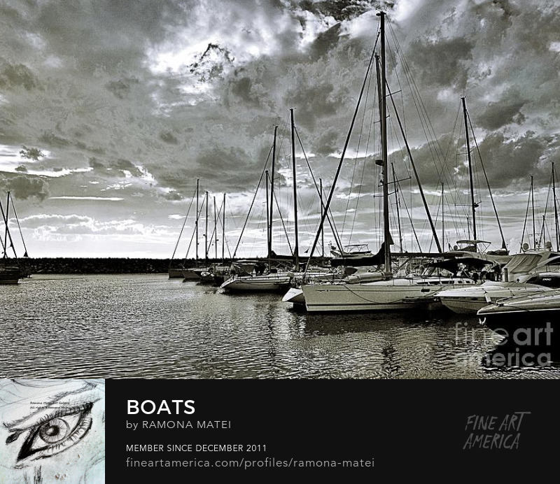 all about boats photograph by Ramona Matei