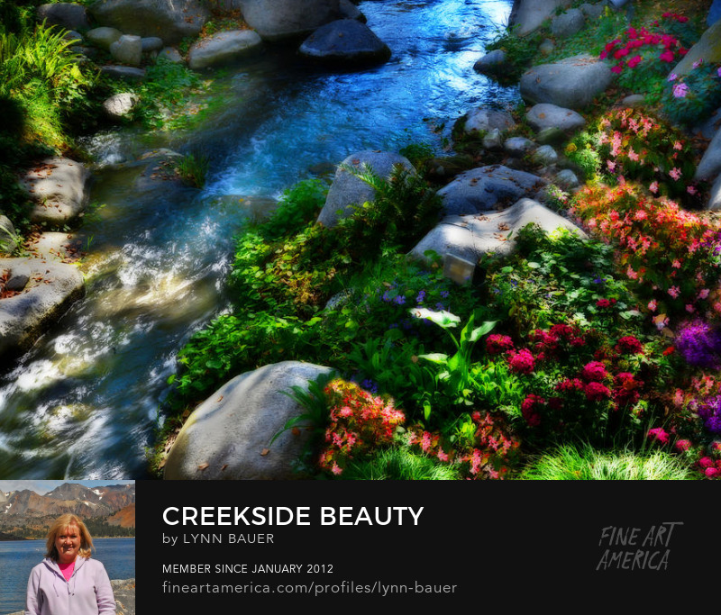 Creekside Beauty Flower Garden Knotts Berry Farm by Lynn Bauer