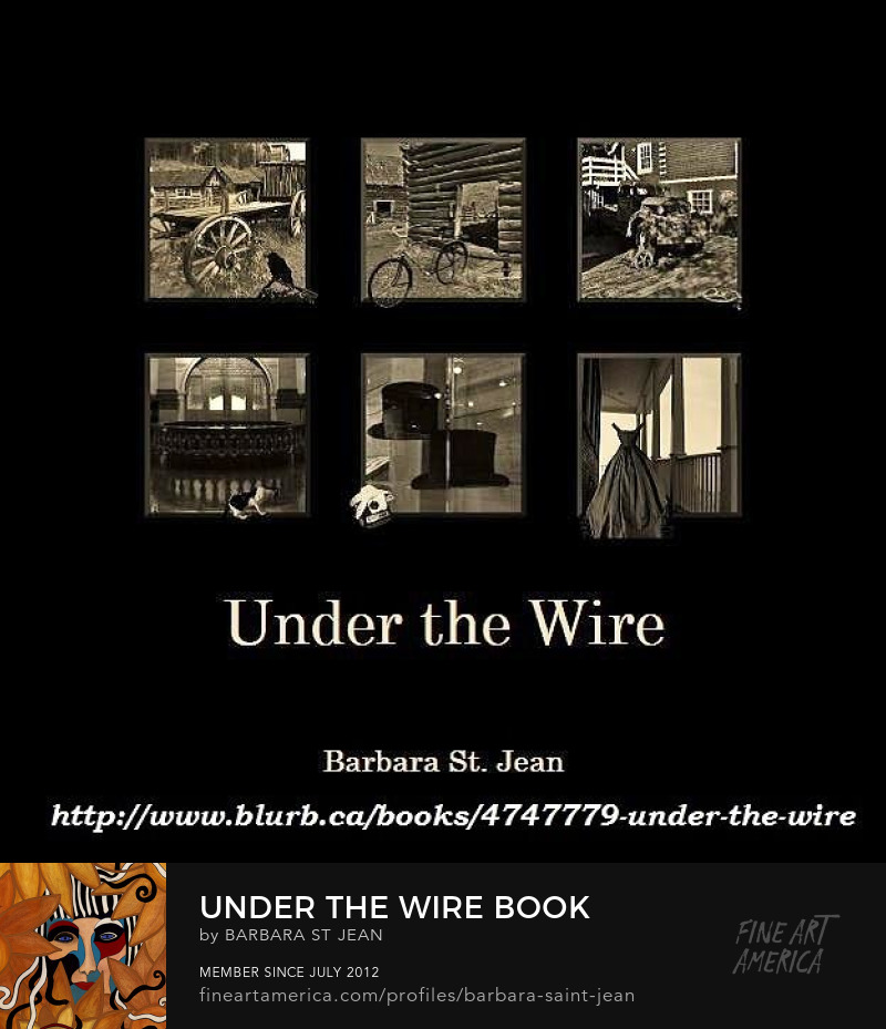 Photography Book - Under the Wire - by Barbara St. Jean