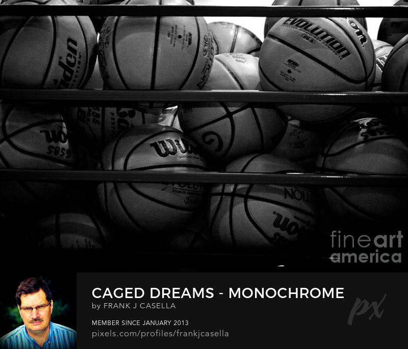 Art Prints basketball nba caged dreams photography frank j casella