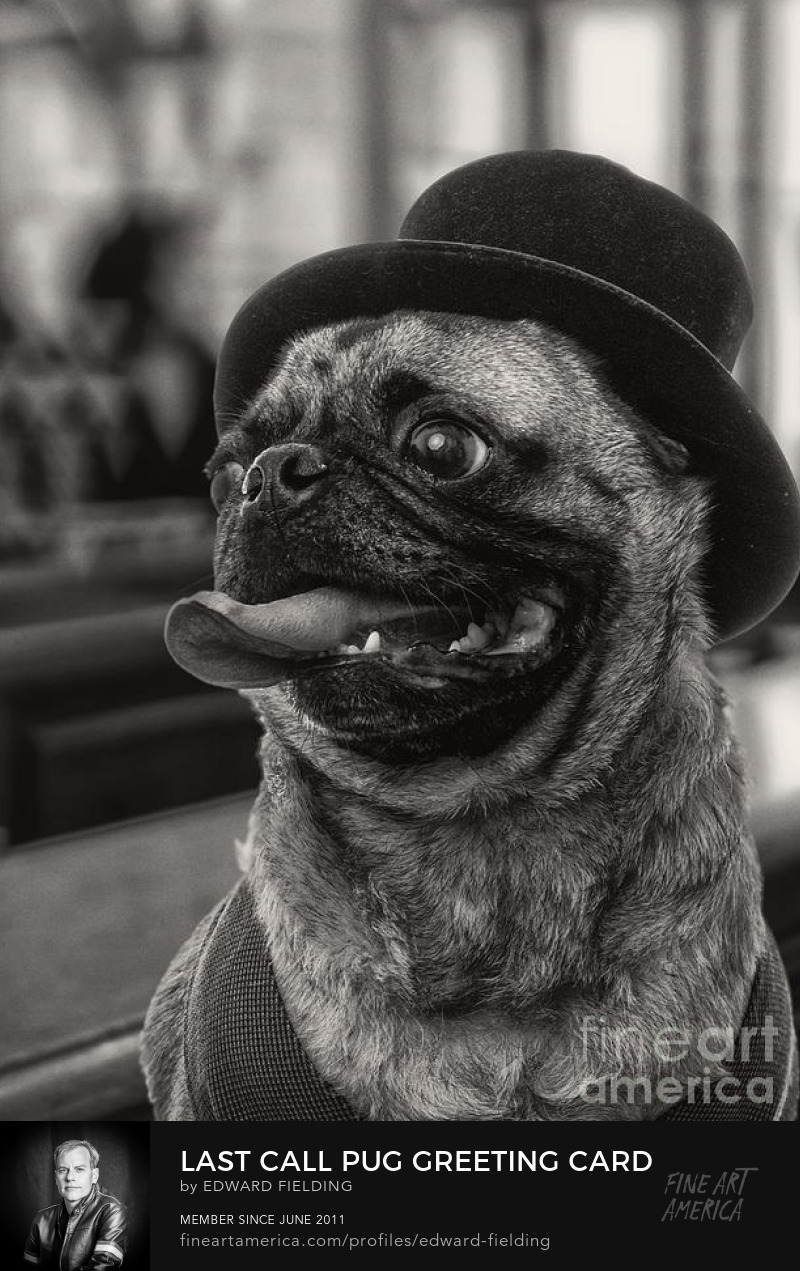 pug Art Online