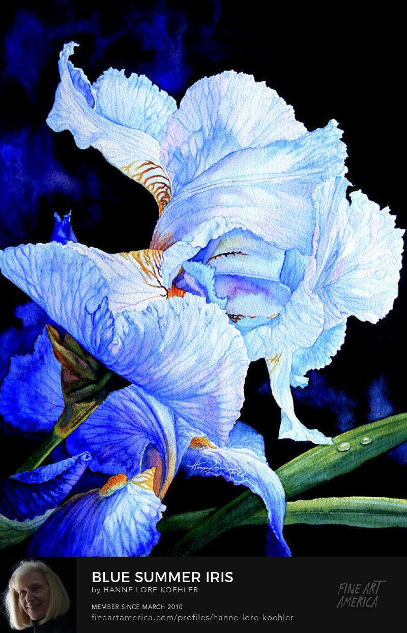 Garden Painting Of Irises