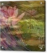 A Splash Of Lily Acrylic Print