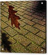 Autumnal Equinox Acrylic Print