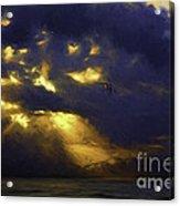 Byron Bay Sunset Acrylic Print