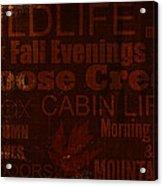 Cabin Life Acrylic Print
