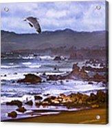 California Highway 1  Acrylic Print
