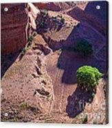 Canyon De Chelly Farmland Acrylic Print
