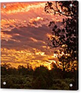 Canyon Dechelly Sunset In Copper And Gold Acrylic Print