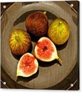Common Fig Ficus Carica Acrylic Print by Venetia Featherstone-Witty