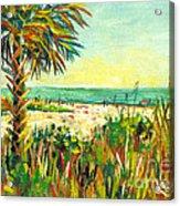 Crescent Beach Palm Acrylic Print