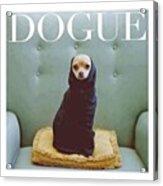 😂😂😂😂 #dogue #vogue Acrylic Print