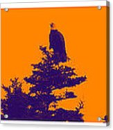 Eagle Scout At Sunset Acrylic Print