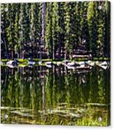 Granite Reflections  Acrylic Print