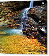 Holly River State Park Upper Falls Acrylic Print