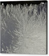 Ice Crystal Formations Acrylic Print