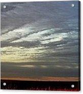 Kansas Prairie Grass Sunrise Acrylic Print