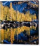 Leprechaun Lake Larches Acrylic Print