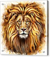 Lion Head In Front Acrylic Print