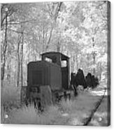 Locomotive With Wagons In Infrared Light In The Forest In Netherlands Acrylic Print by Ronald Jansen