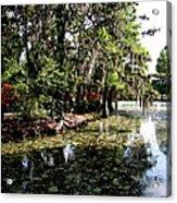 Magnolia Plantation Gardens Acrylic Print