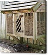 Old Fashioned Chicken Coop In Colonial Williamsburg Virginia Acrylic Print