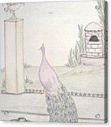 Peacock In An Italian Landscape Acrylic Print by Christine Corretti