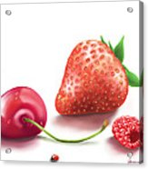 Red Fruits Acrylic Print
