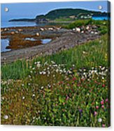 Rocky Harbour In Gros Morne Np-nl Acrylic Print