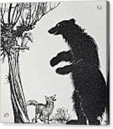The Bear And The Fox Acrylic Print