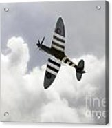 The Blue Spitfire Acrylic Print