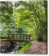 The Bridge Birches Valley Cannock Chase Acrylic Print