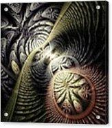Trilobite Trail Acrylic Print
