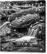 Waterfall Great Smoky Mountains Painted Bw    Acrylic Print