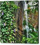 001 Falling Waters For The Cactus Lover In You Buffalo Botanical Gardens Series Acrylic Print