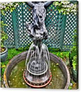 001 Fountain Buffalo Botanical Gardens Series Acrylic Print