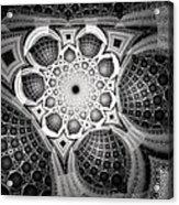 0062 Acrylic Print