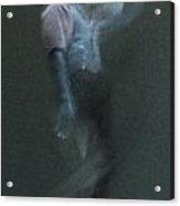 01 24 2013 Dancer 2 Acrylic Print