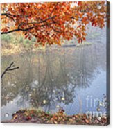0132 Autumn At Starved Rock Acrylic Print