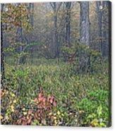 0134 Misty Meadow Acrylic Print