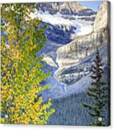 0141 Fall Colors On Icefield Parkway Acrylic Print