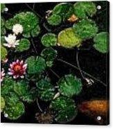 0148-lily -   Embossed Sl Acrylic Print