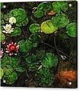 0148-lily -   Lux Sl Acrylic Print