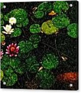 0148-lily -   Pastel Pencil Sl Acrylic Print