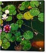 0148-lily -  Expressionist Plein Air Sl Acrylic Print