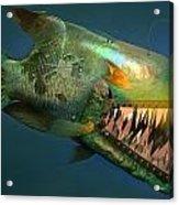 Iron Fish   Acrylic Print